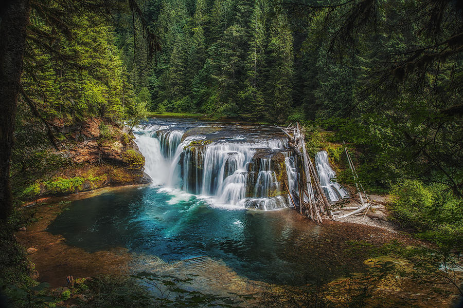 Lewis Photograph - Swimming Hole by James Heckt