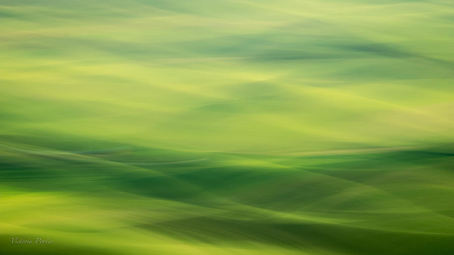 Swipe of Palouse Rolling Hills by Victoria Porter