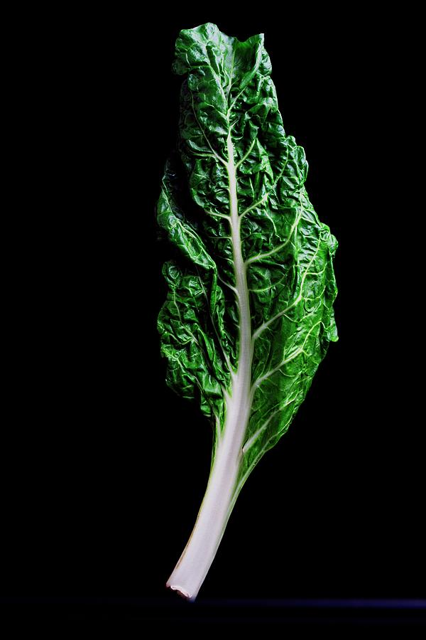 Swiss Chard Photograph by Romulo Yanes