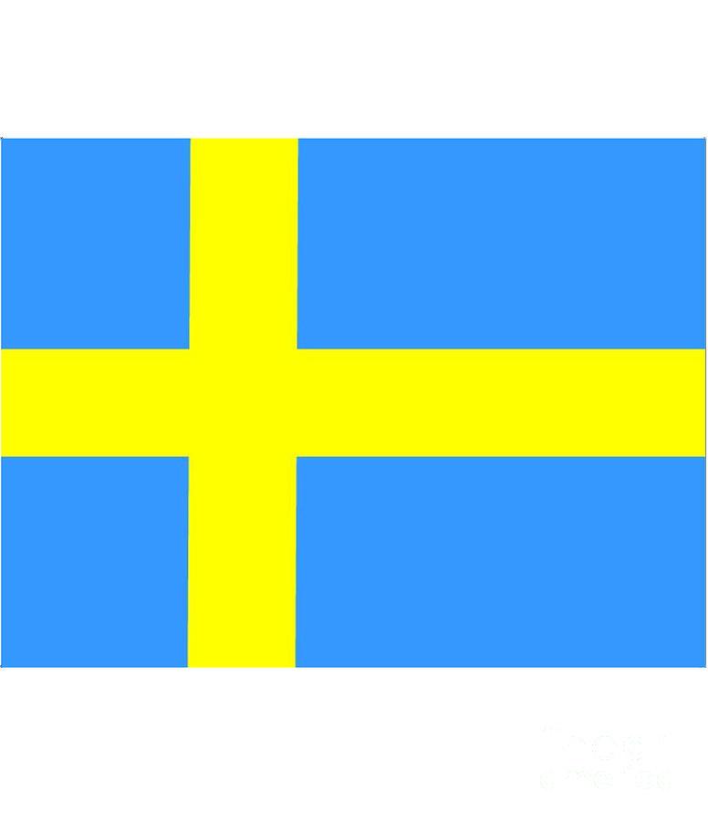 Banner Digital Art - Sweden Flag by Frederick Holiday