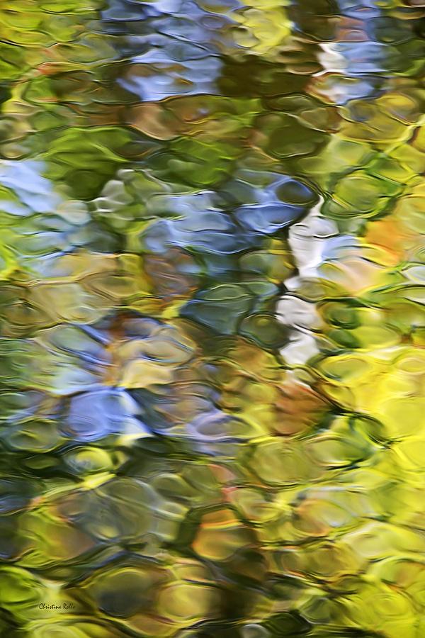 Mosaic Photograph - Sycamore Mosaic by Christina Rollo