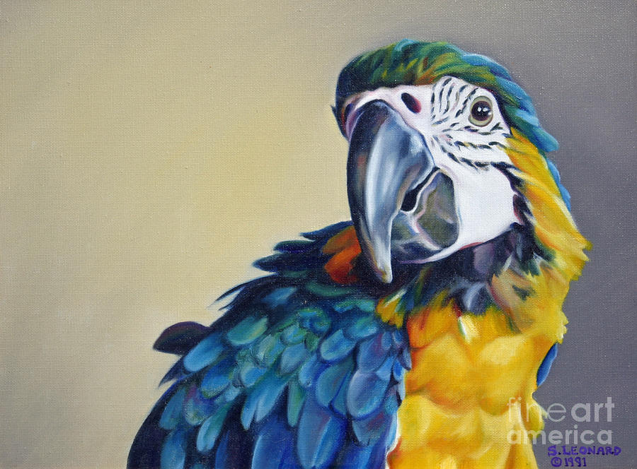 Macaw Painting - Syd by Suzanne Leonard