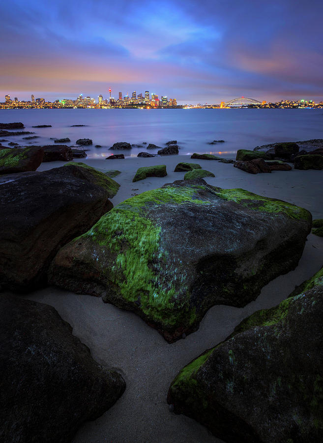 Sydney City At Dusk, Taken From North Photograph by Atomiczen