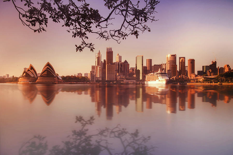 Sydney City Photograph by Saenman Photography