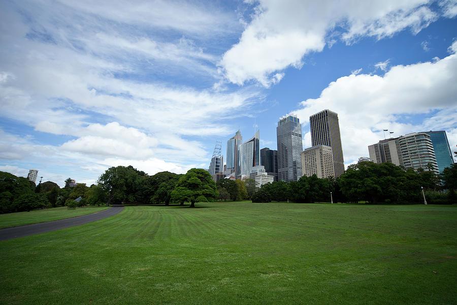 Sydney Cityscape Seen From Royal Photograph by Leopatrizi