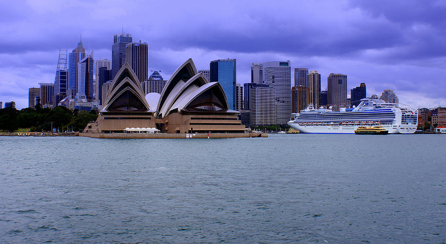 Sydney Photograph - Sydney by DerekTXFactor Creative