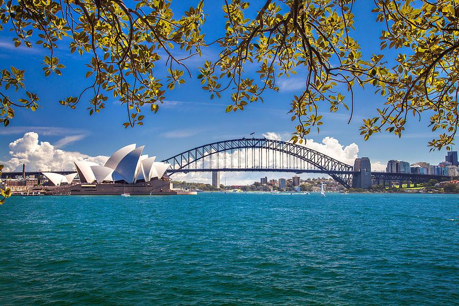 Sydney Photograph - Sydney Harbour Skyline 2 by Az Jackson