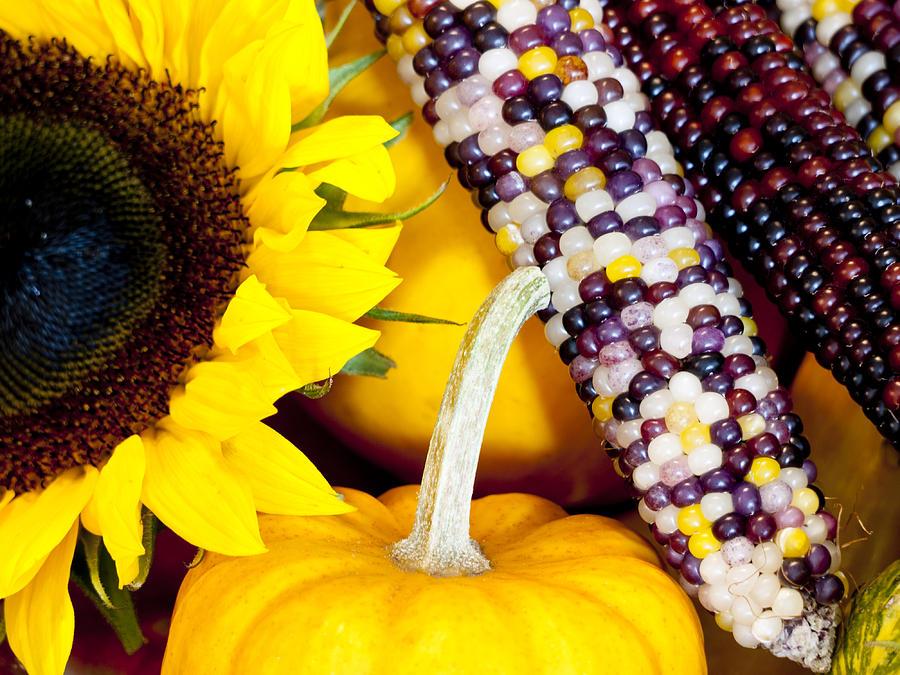 Sunflower Photograph - Symbols Of Autumn by Rae Tucker