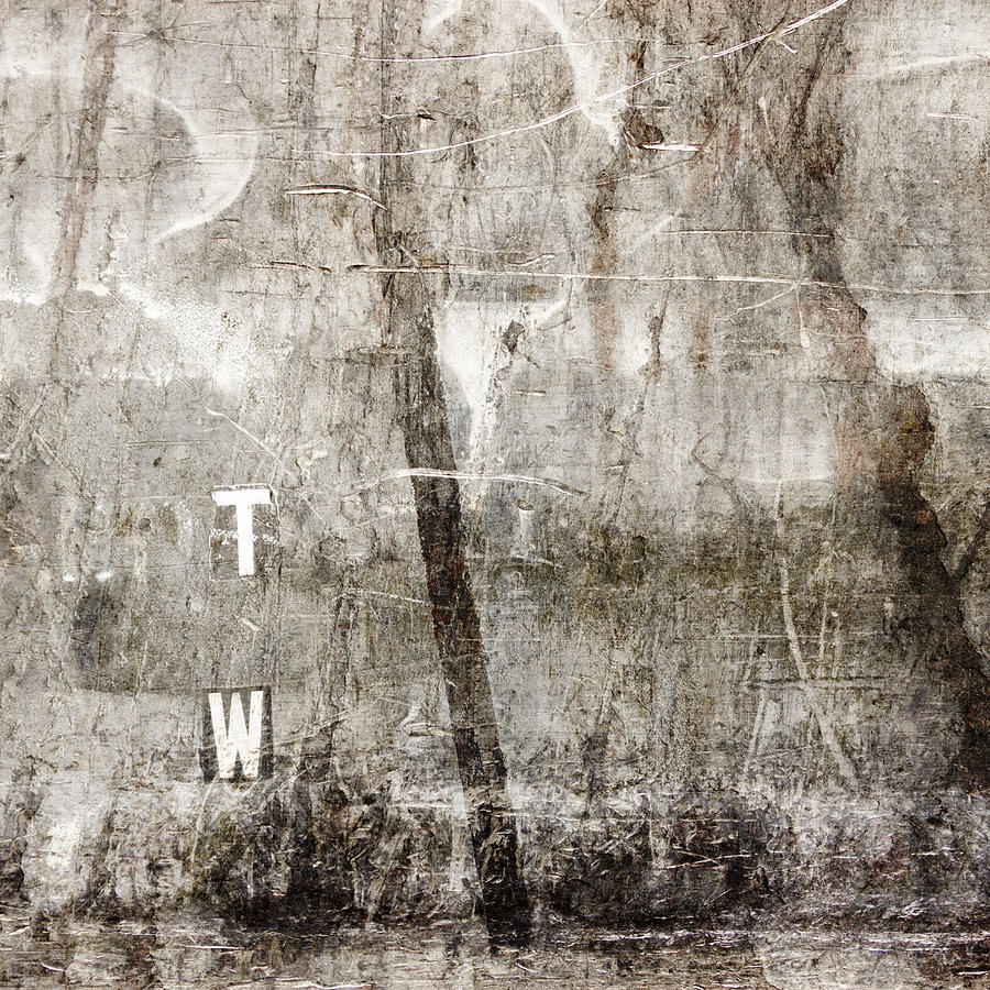 Grunge Photograph - T W by Carol Leigh