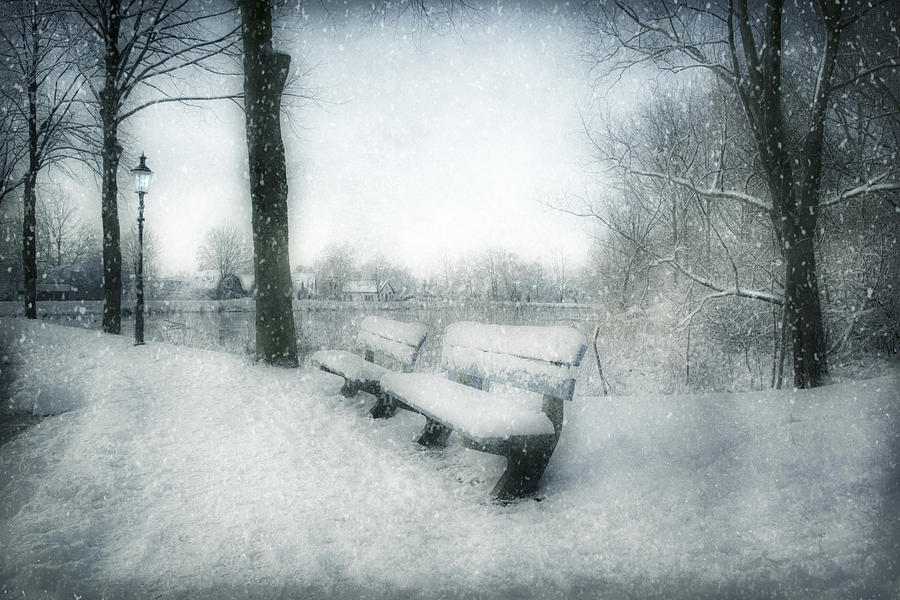 Take a Seat by Annie Snel