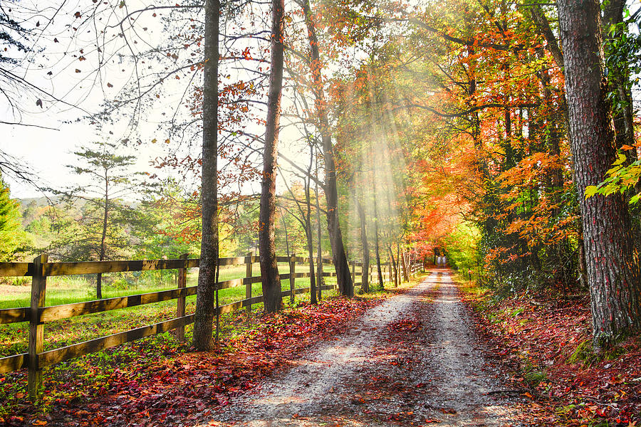Appalachia Photograph - Take The Back Roads by Debra and Dave Vanderlaan