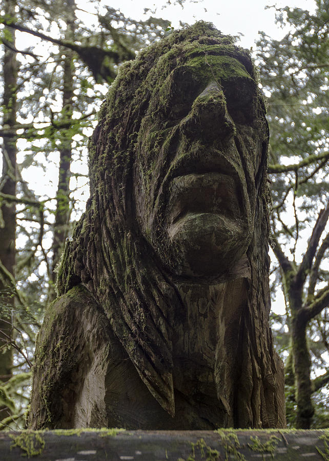 Trees Of Mystery Photograph - Tall Tales Bust by Rick Starbuck