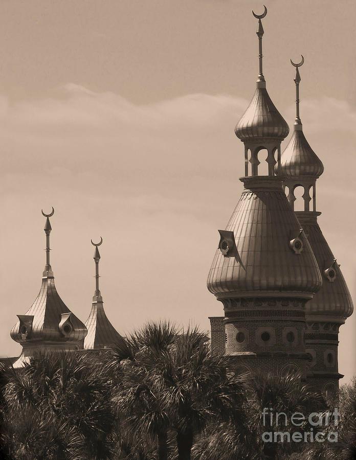 Tampa Photograph - Tampa Minarets  by Carol Groenen