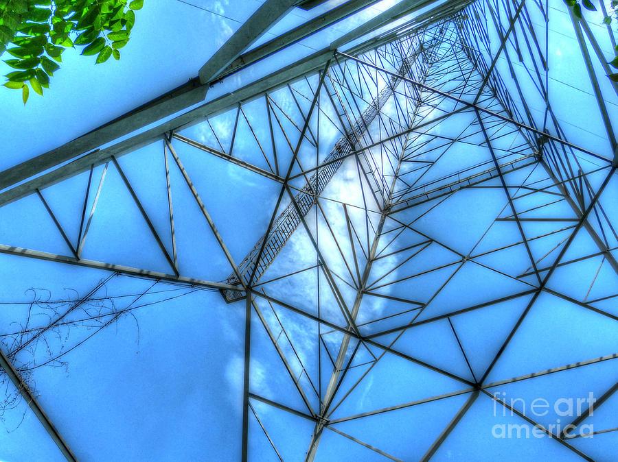 Michigan Photograph - Tangled Web by MJ Olsen