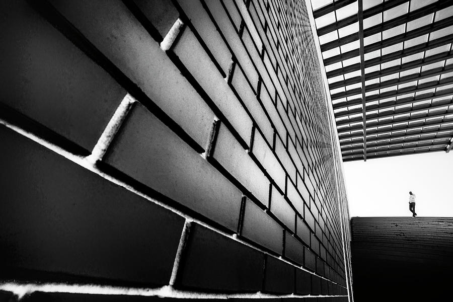 Aveiro Photograph - Tangles by Paulo Abrantes