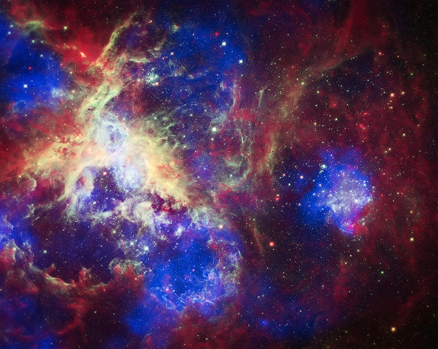 Tarantula Nebula Photograph - Tarantula Nebula 6  by Jennifer Rondinelli Reilly - Fine Art Photography