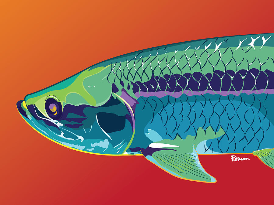Tarpon Digital Art - Tarpon Colors by Kevin Putman