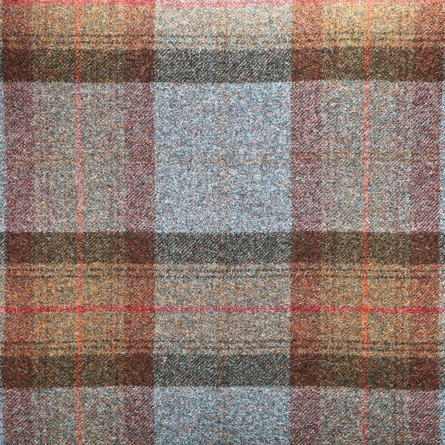 Background Photograph - Tartan Wool by Tom Gowanlock
