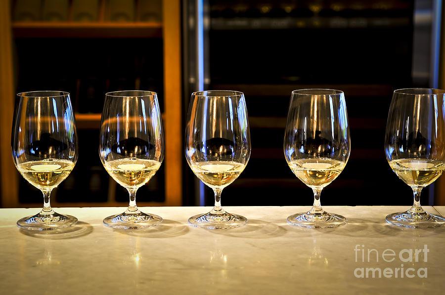 Wine Photograph - Tasting Wine by Elena Elisseeva