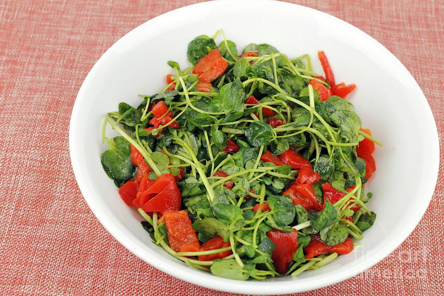 Tasty Watercress Salad Photograph
