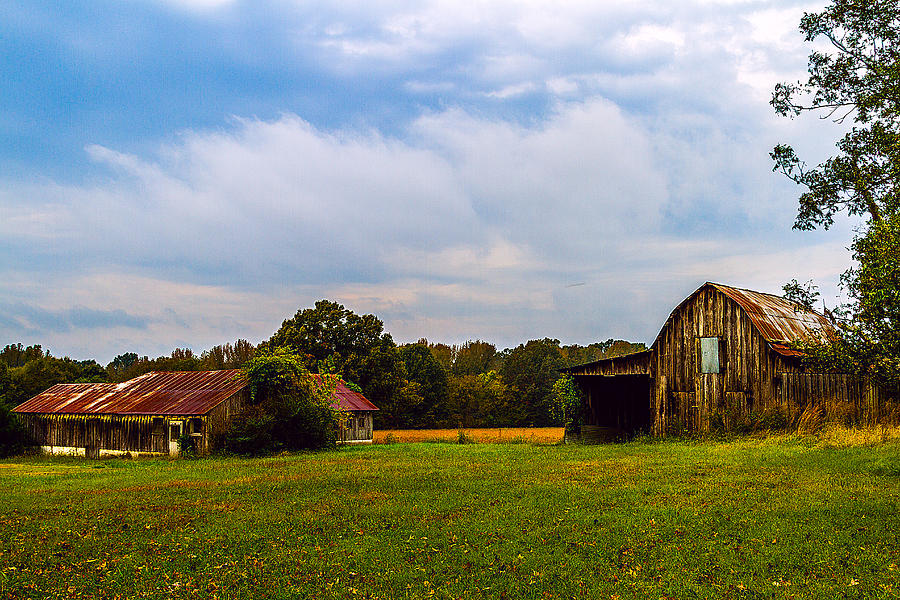 Barn Painting - Tate Country Barns - Rural Landscape by Barry Jones