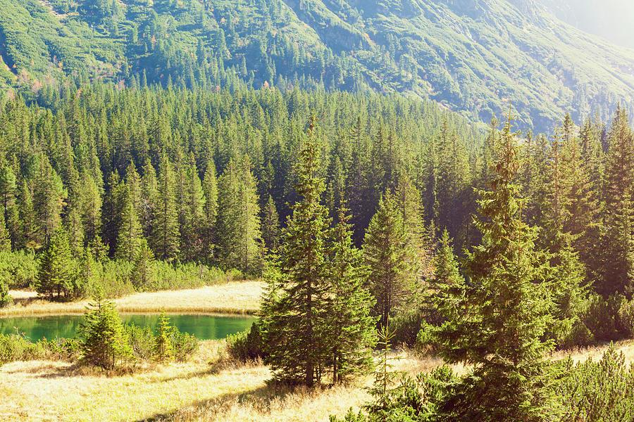 Tatras Photograph by Spooh