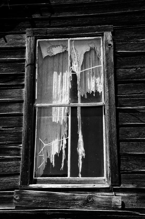 Black Photograph - Tattered And Torn by Cat Connor