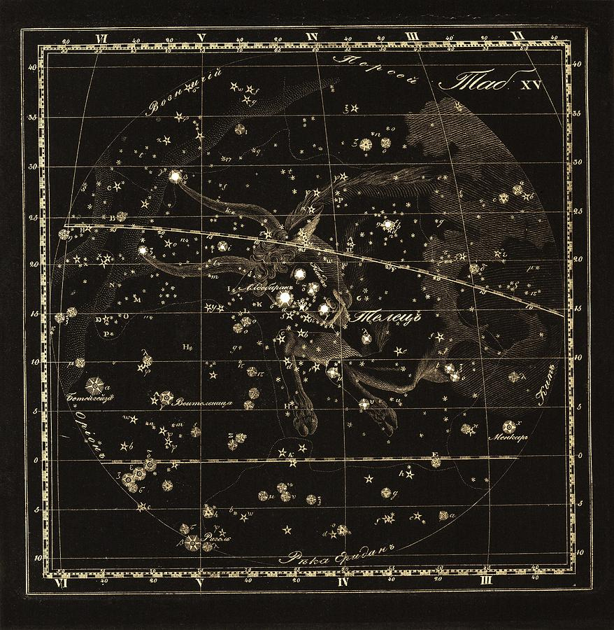 Taurus Photograph - Taurus Constellation, 1829 by Science Photo Library
