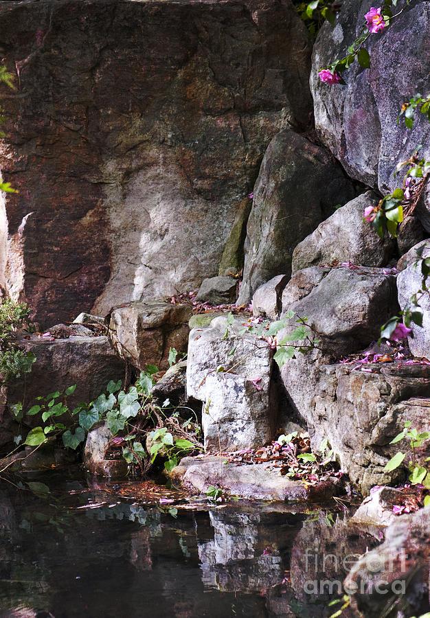 Tea House Rocks by Terri Creasy