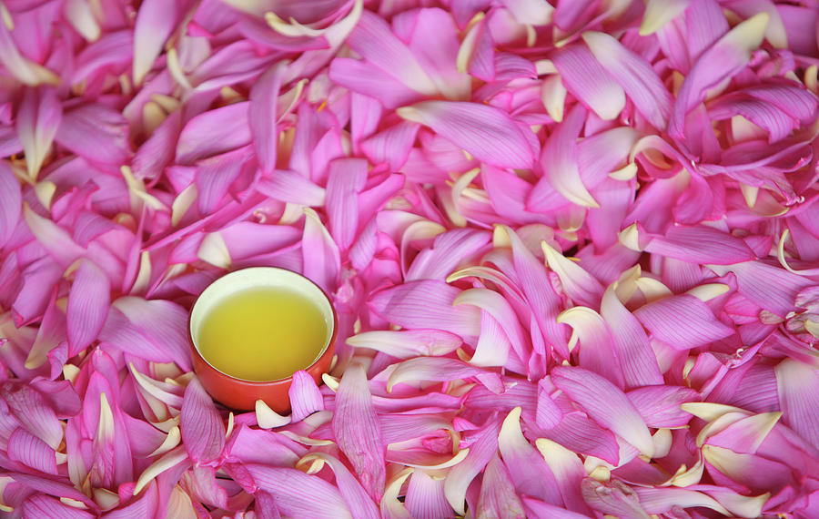 Tea With Petals Of Lotus Photograph by Vietnam