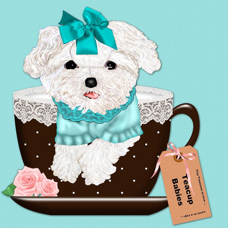 Teacup Photograph - Teacup Baby Maltese by Margaret Newcomb