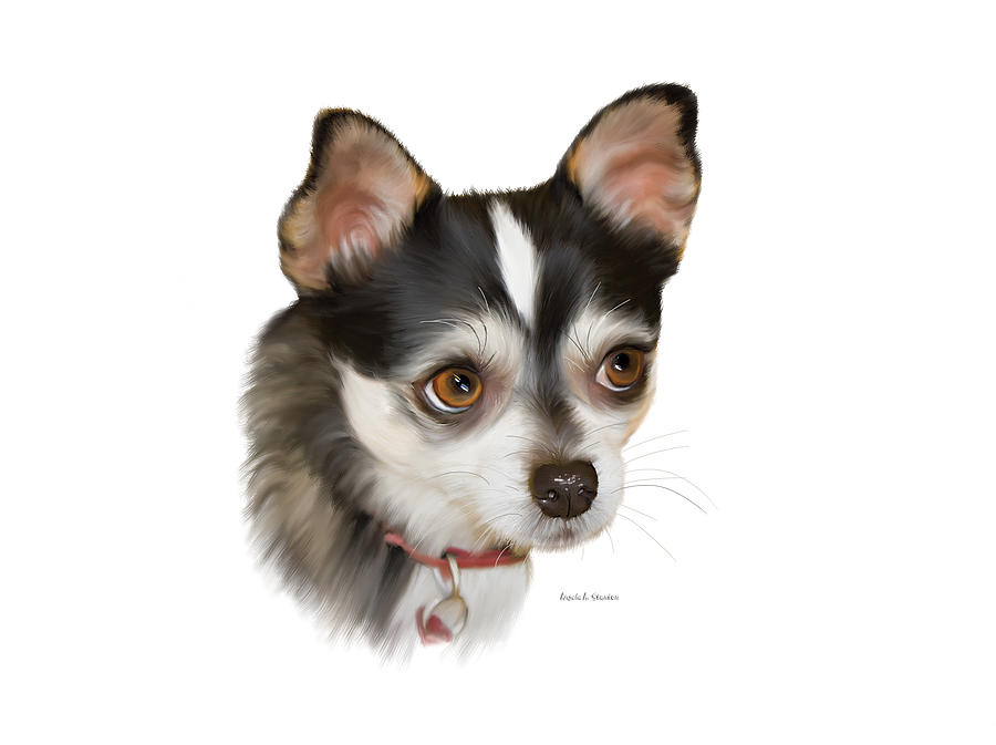 Dog Painting - Teacup Chihuahua by Angela A Stanton