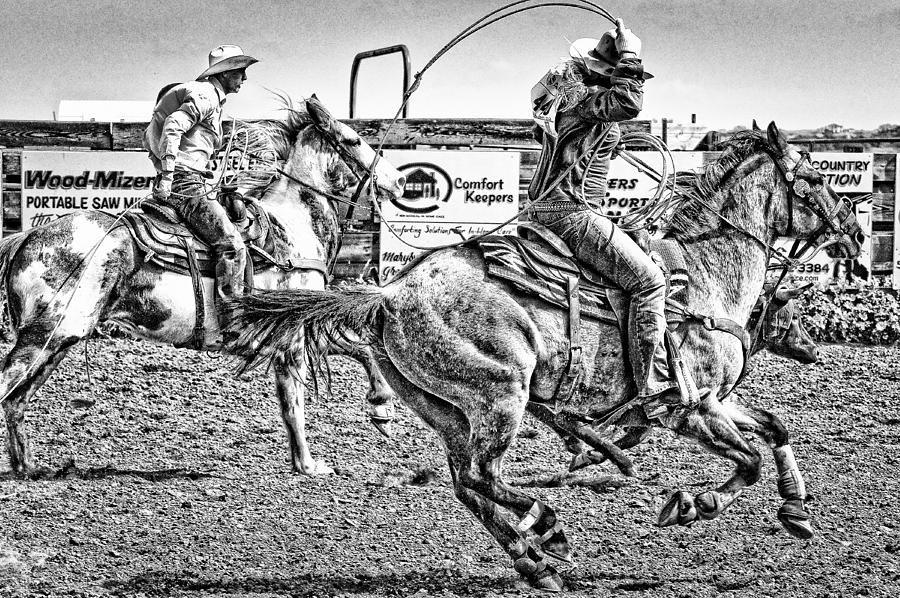 Animals Photograph - Team Roping by Jim Thompson