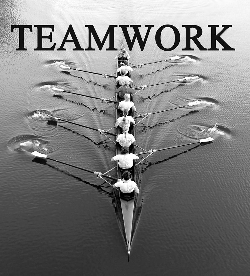 Teamwork Rowing Work A Photograph by David Lee Thompson