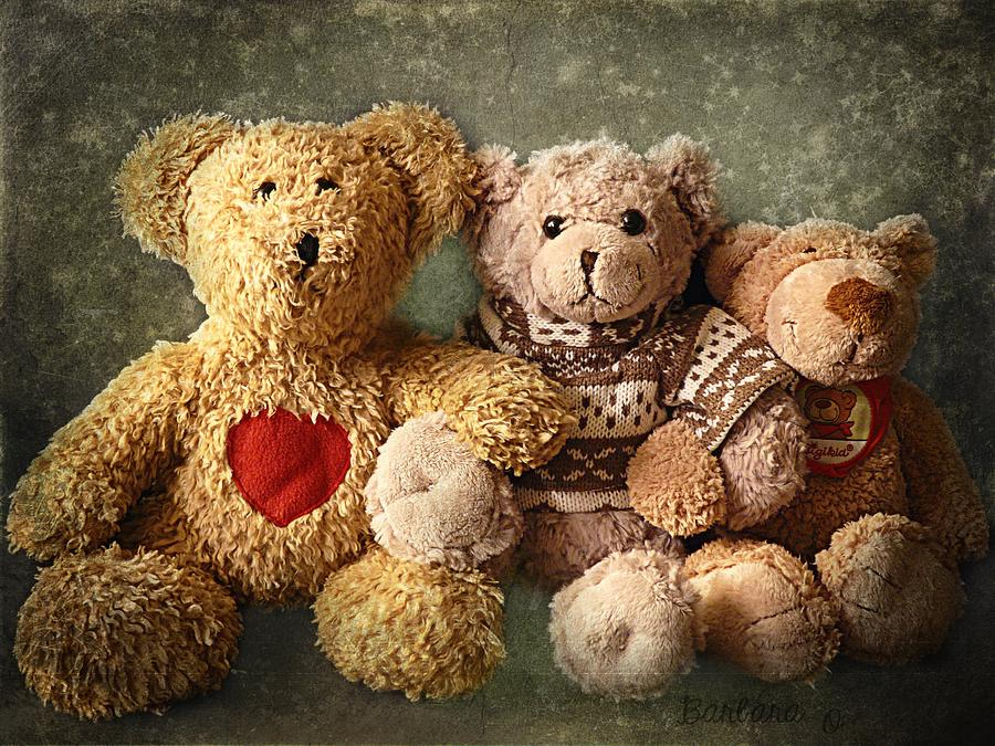 Teddy Photograph - Teddies by Barbara Orenya