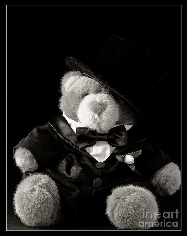 Teddy Bear Groom Photograph
