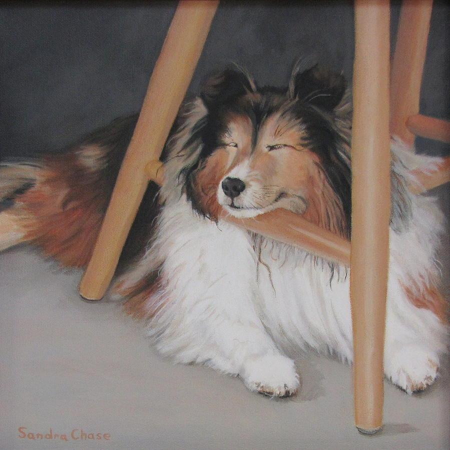Shetland Sheepdog Painting - Teddy In My Studio by Sandra Chase