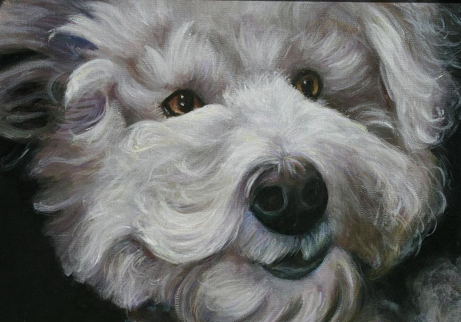 Dogs Painting - Teddy The Bichon by Melinda Saminski