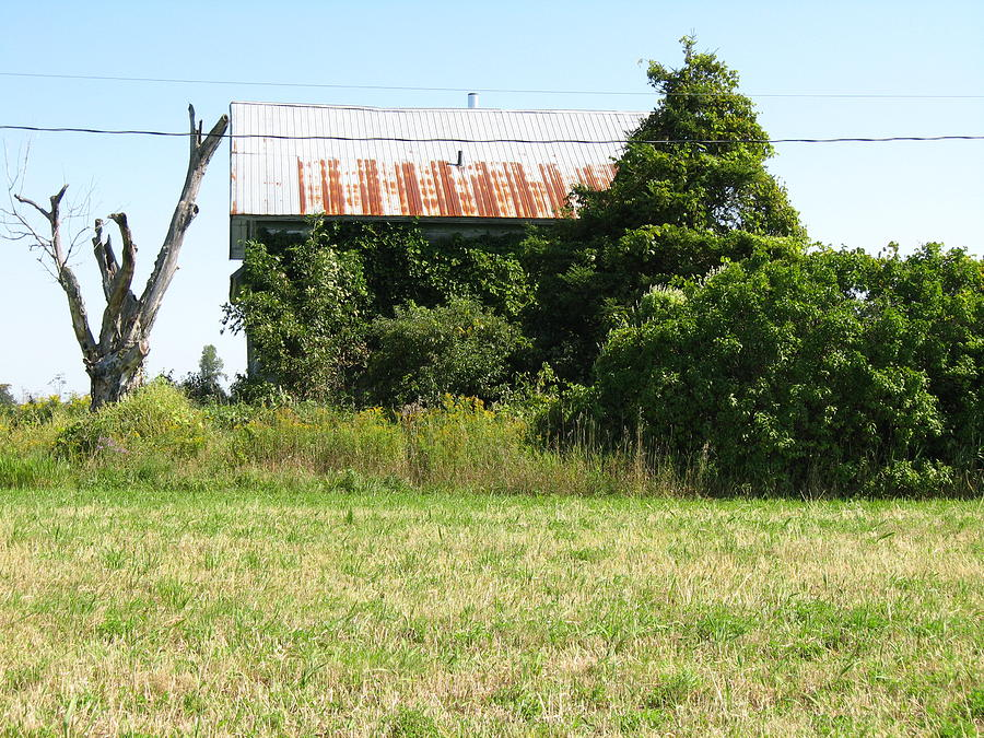 Abandoned Farmhouses Photograph - Tell Me A Secret by Richard Stanford