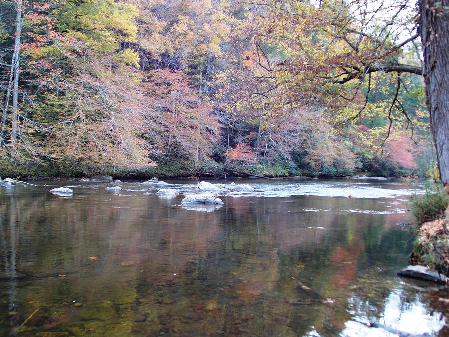 Tellico River In Fall Photograph by Regina McLeroy