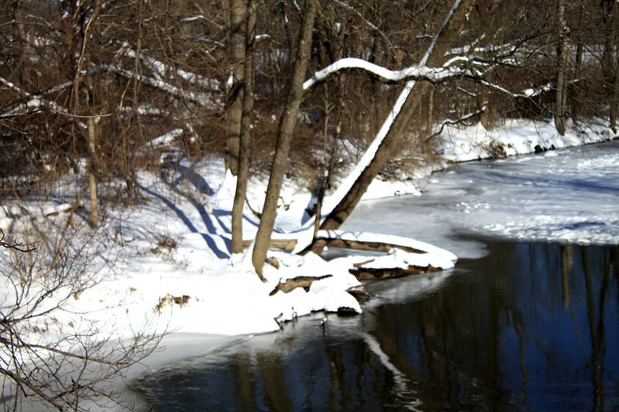 River Photograph - Ten Mile River Ne View by Barbara Giordano