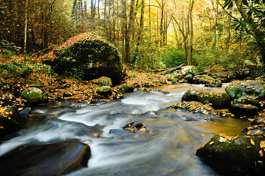Great Smoky Mountains National Park Photograph - Tennessee Stream In Fall by Don and Bonnie Fink
