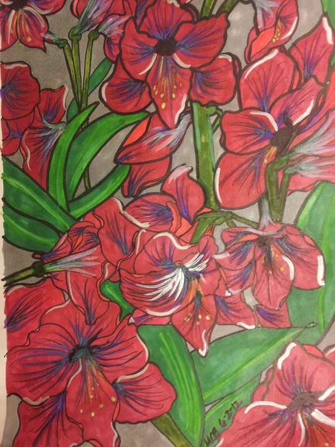 Amaryllis Drawing - Terra Da Minha Mae by Marcia Brownridge