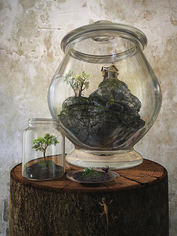 Jar Digital Art - Terrarium by Cynthia Decker