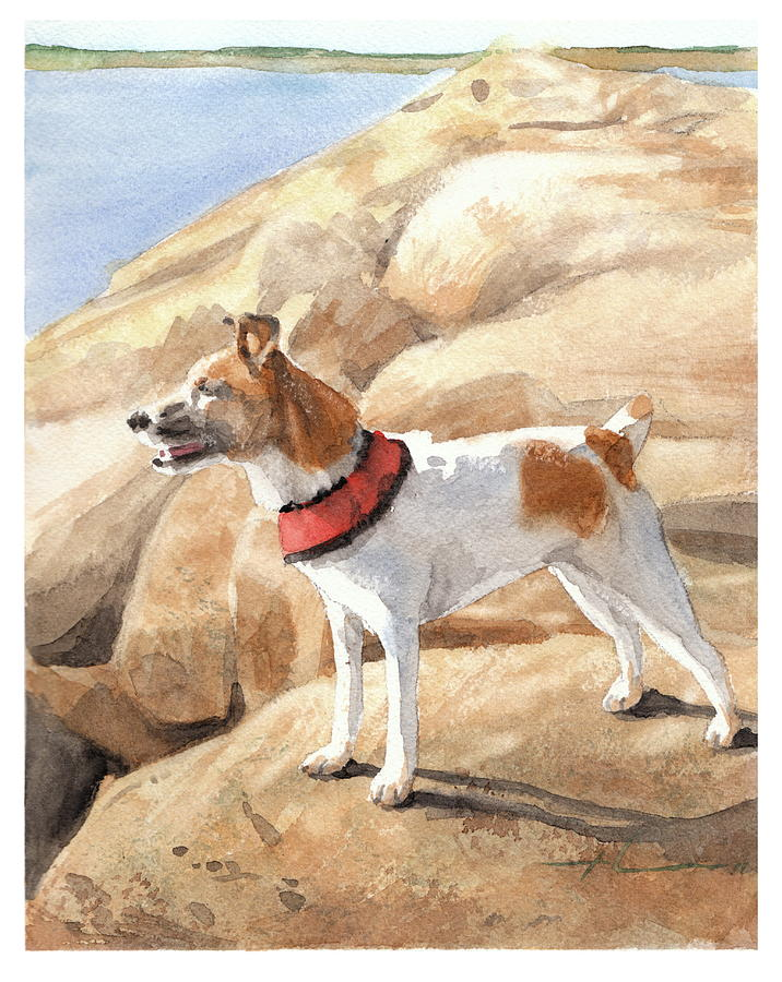 Terrier On Seawall Watercolor Portrait  Drawing by Mike Theuer