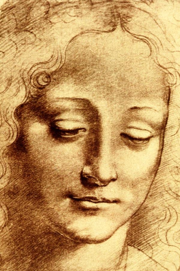 Leonardo Di Vinci Art | Fine Art America