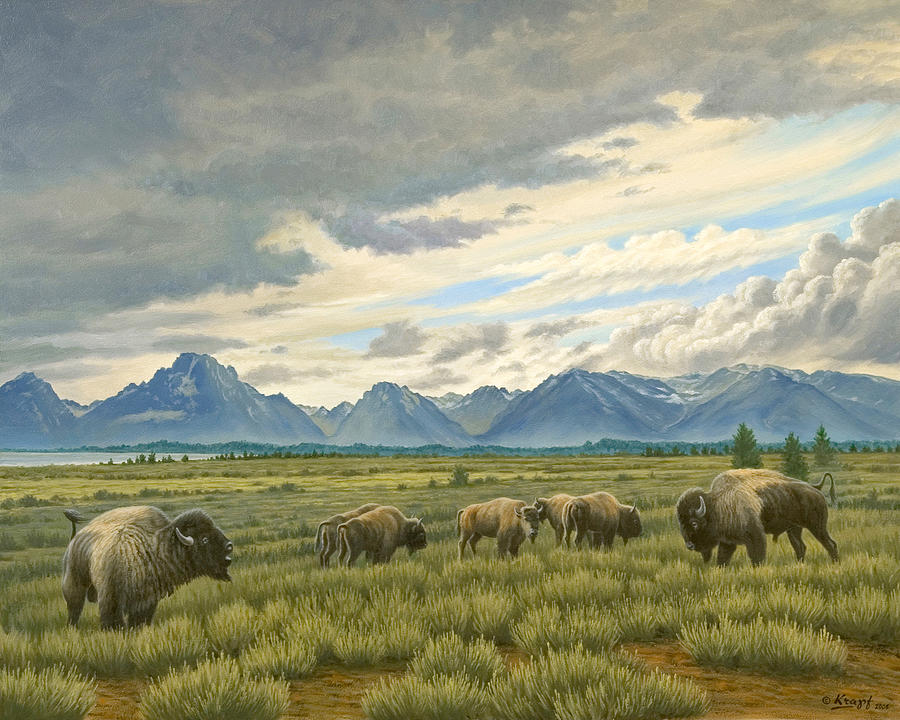 Wildlife Painting - Tetons-buffalo  by Paul Krapf