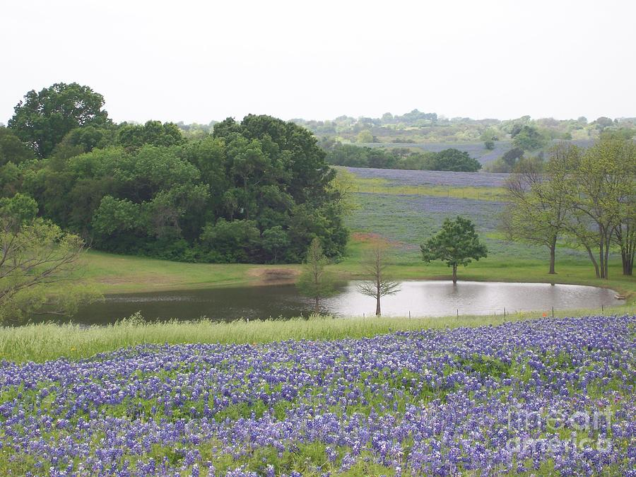 Landscapes Photograph - Texas Bluebonnets And Lake by Ellen Howell