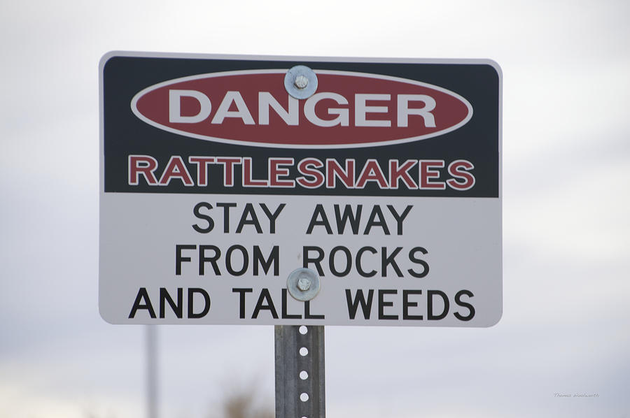 Snake Photograph - Texas Danger Rattle Snakes Signage by Thomas Woolworth