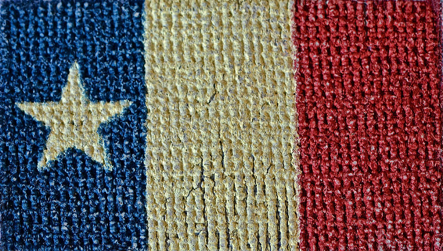 Texas Photograph - Texas First Lone Star Dodsons Flag by Bill Owen